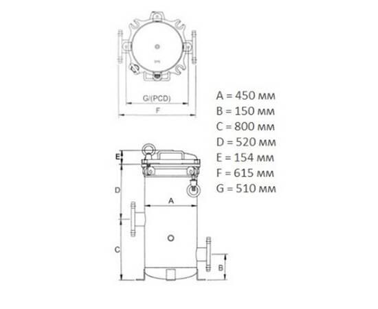 """Мультипатронный фильтр 50 куб/час, 40SL х24, вход фланец 3"""" ( DN80), изображение 2"""